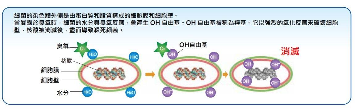 低濃度臭氧-殺菌原理